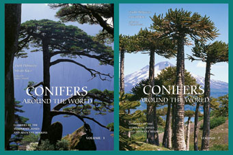 CONIFERS AROUND THE WORLD - Cover